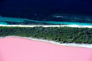 Bubblegum Lakes 3