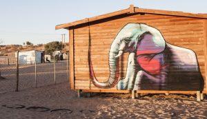 Colori in Sud Africa 1