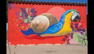 Colori in Sud Africa 5