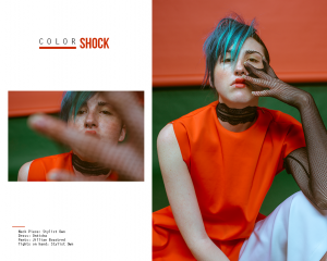 COLOR SHOCK____ 2