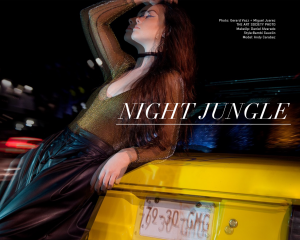 NIGHT JUNGLE 1