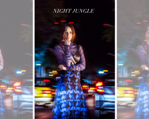 NIGHT JUNGLE 11