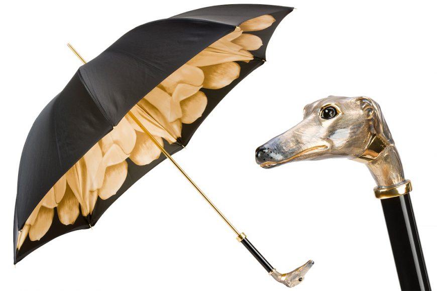 Pasotti - dog