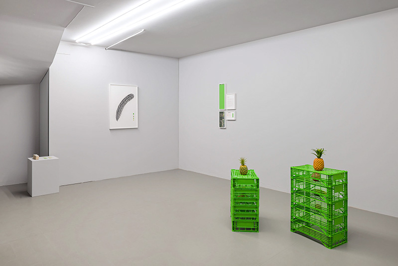 Fabien Marques, The Distinctions, installation views at SMDOT, Udine, 2019-2020